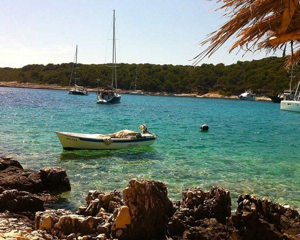 Palmizana shore