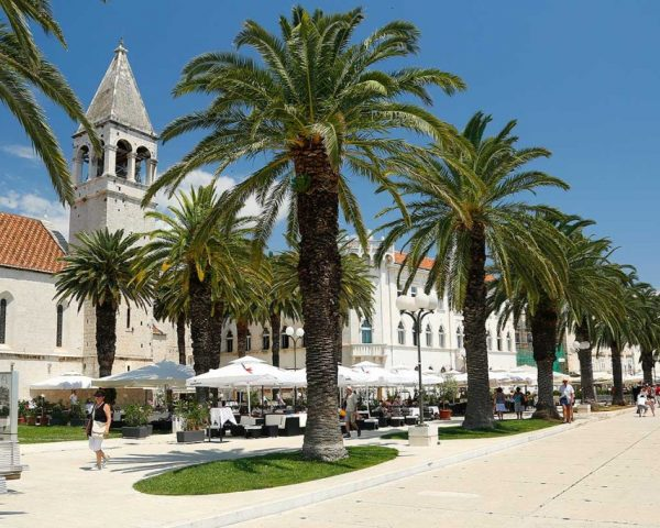 Palmtrees-TrogirPromenade-walkway