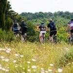 Split bicycle tour
