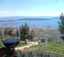 Zinfandel Origin Wine Tour From Split