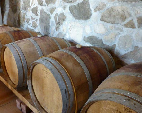 Zinfandel Wine
