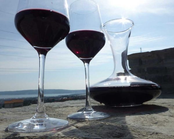 Zinfandel Wine – Wine Tour Split