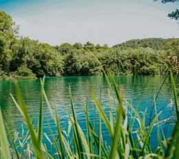 view on the calm Krka lake