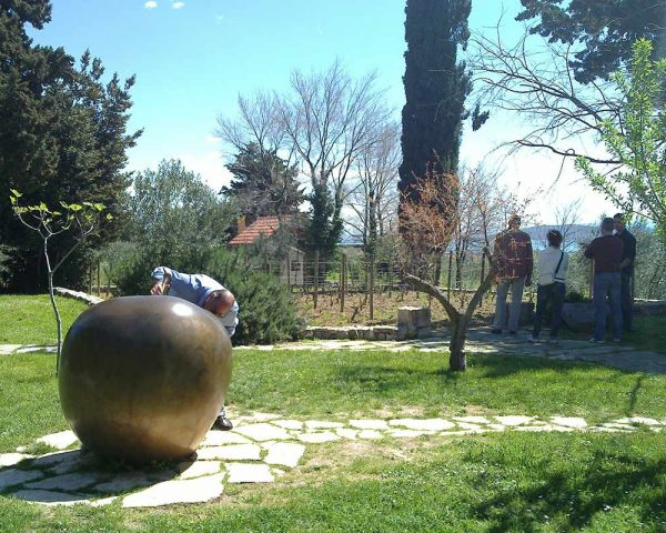 BiblicalGarden-Apple-View-WineTastingTour-toursfromsplit