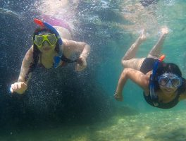 SeaKayakingTourSplit-snorkeling