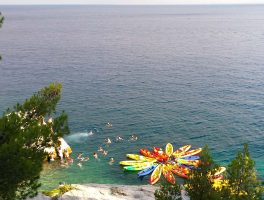 SeaKayakingTourSplit-timeforswimming