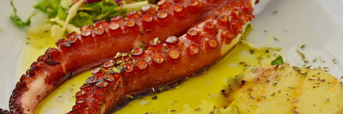 Octopus on variety of ways, must try food in Dalmatia