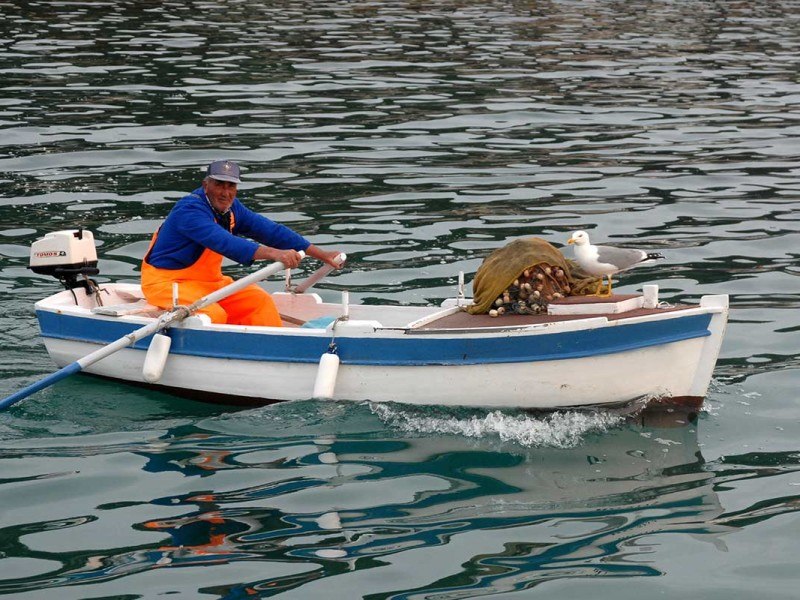 Fishermen in Komiza