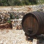 Wine Barrel, island Brac