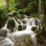 WaterstreamsThroughPlitvice