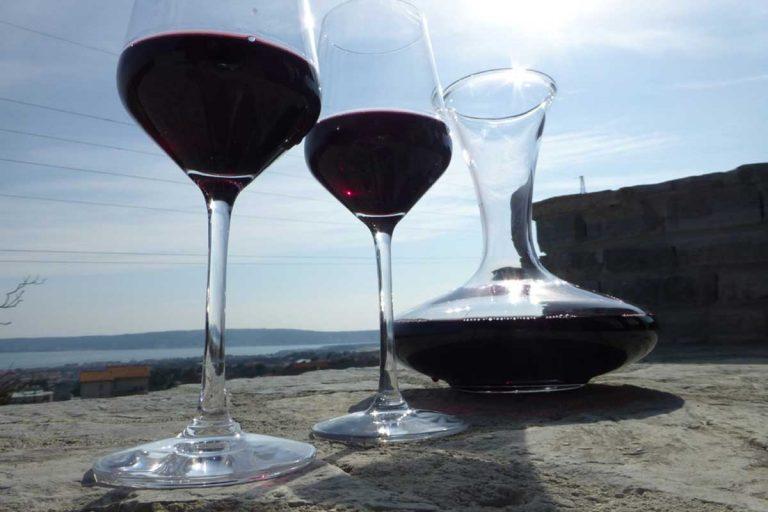 Zinfandel Wine – Wine Tour Split
