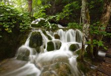 cascading water in Plitvice