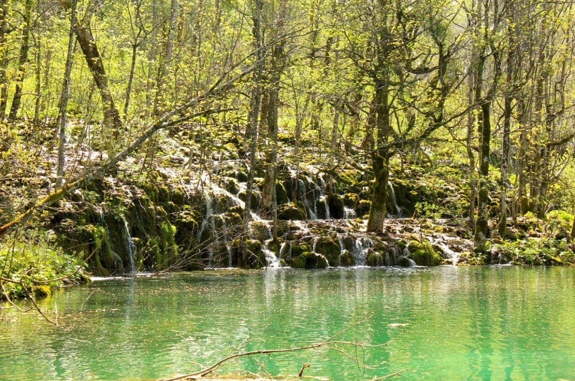 PlitviceLakesNP-greenforrestandlake