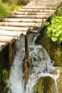 stream under wooden trail