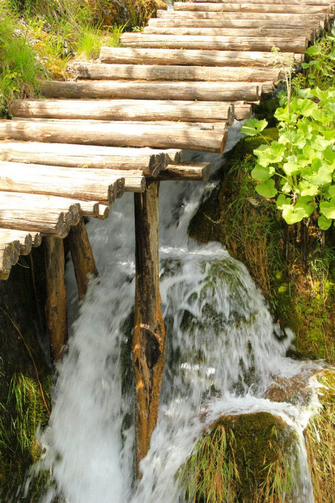 stream under wooden trail