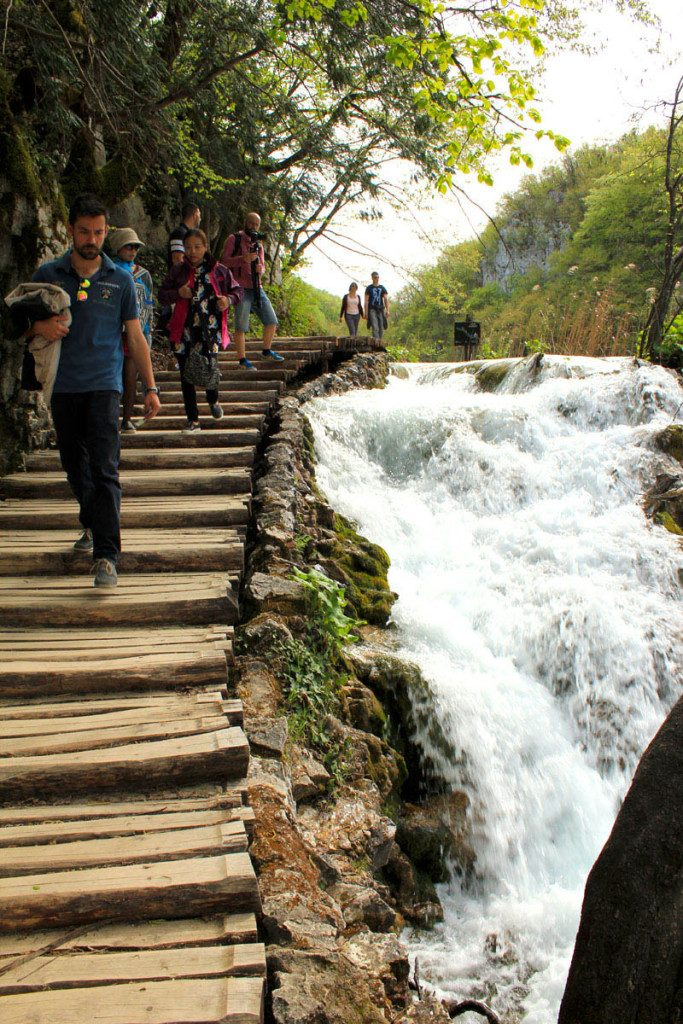 trail next to cascades