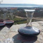 ZinfandelWineTasting-winetoursplitcroatia