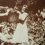tradition-grapepicking-winetoursplit