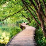 trail-through-plitvice-lakes-park